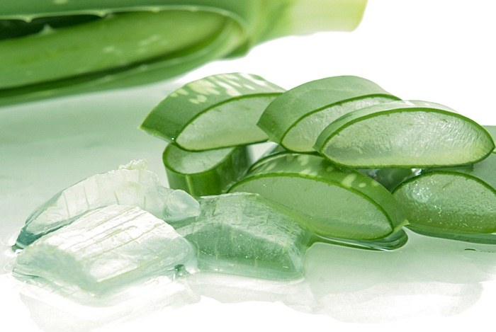 home remedies for fever blisters - aloe vera