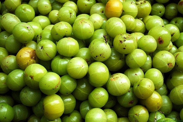 home remedies for bladder infection - indian gooseberry