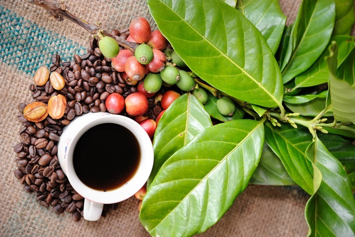 Can People With Acid Reflux Drink Espresso