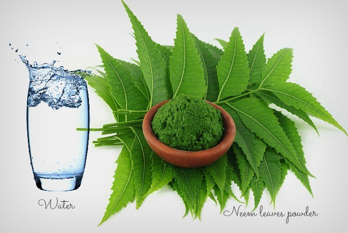 How many leaves per day of neem are good for diabetics ...
