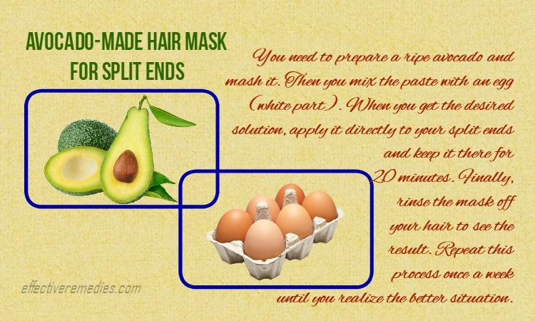 home-remedies-for-split-ends