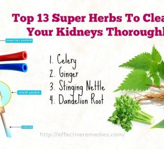Super herbs to cleanse your kidneys