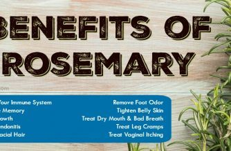 Benefits Of Rosemary