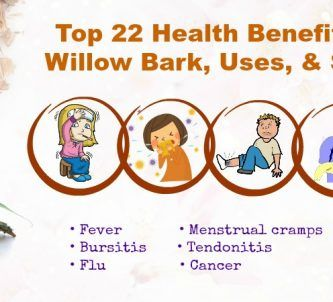 Benefits Of White Willow Bark