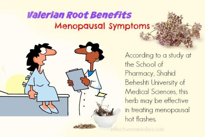 Valerian Root Benefits