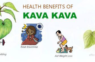 benefits of kava kava