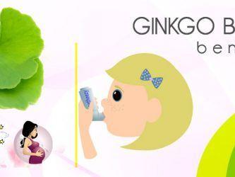 benefits of ginkgo biloba