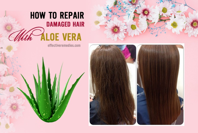 how to repair damaged hair - aloe vera