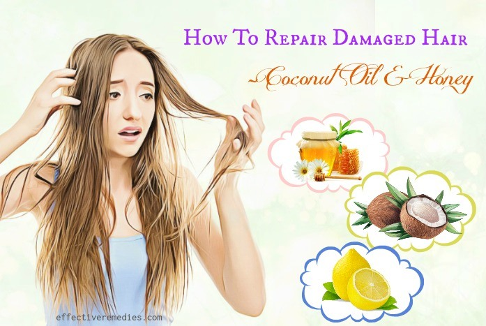 how to repair damaged hair - coconut oil & honey