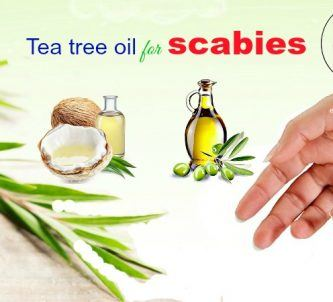 tea tree oil for scabies in kids