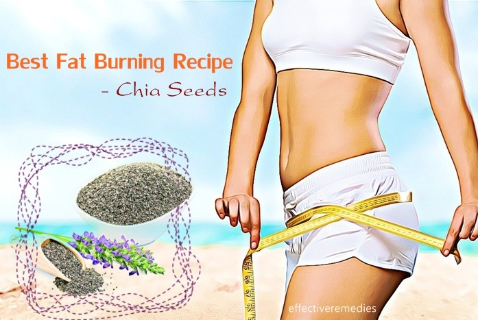 best fat burning recipe - chia seeds